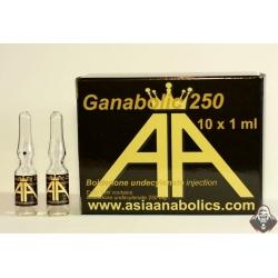 Ganabolic 250 (Asia Anabolics) 250mg/ml