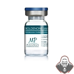 BOLDENONE 250 - Boldenone undecylenate 250mg - Magnus