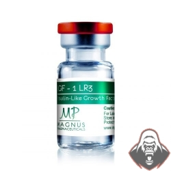 IGF1-LR3 1MG - MAGNUS