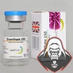 Enanthate 250  Elite Pharm 250mg/1ml - (10ml)